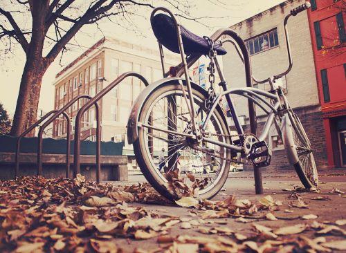 dviratis,dviratis,senas,vintage,sepija,užrakintas,vairai,grandinė,lapai,dangas,betonas,turėklai,pastatai