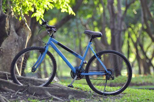 aktyvus, veikla, dviratis, dviračiu, dviratis, dviratis, žalias, parkas, ciklą, ekologiškai, fitnesas, gyvenimas, gyvenimo būdas, lauke, poilsis, atsipalaiduoti, atsipalaidavimas, važiuoti, dviratis žaliame parke