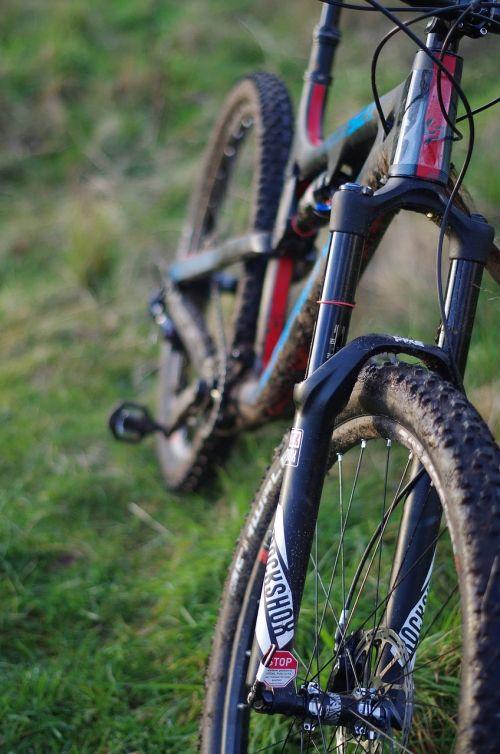 dviratis,offroad,lauke,ciklą,dviračiu