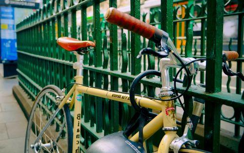 dviratis,Melburnas,dviratis,vintage,lenktyninis dviratis,lenktynininkas,lenktyninis dviratis,ruduo,šalmas,lenktynės,žalias,senas,hipster,australia,eismas,gamta
