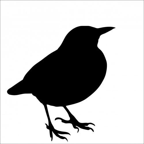 paukštis, juoda paukštis, gyvūnas, juoda, siluetas, menas, iliustracija, balta, izoliuotas, fonas, Scrapbooking, figūra, kontūrai, paukščio siluetas, juodasis paukštis