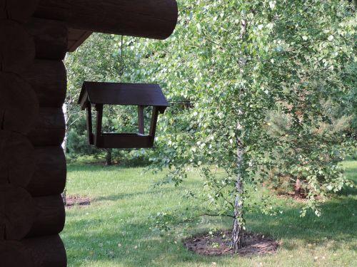 birdhouse,dacha,miškas