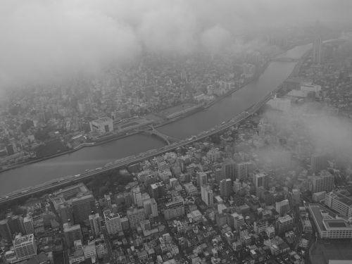 paukščio skrydžio vaizdas,Sumida upė,Japonija,Tokyo,tokyo dangus medis,juoda ir balta,miestas,miesto panorama