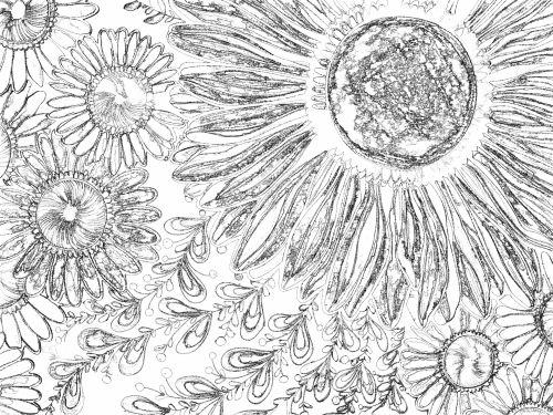 gėlė, gėlės, gėlių, fonas, tapetai, juoda & nbsp, balta, traukiamas, atkreipti, menas, meno, Laisvas, viešasis & nbsp, domenas, juodos ir baltos gėlės eskizas