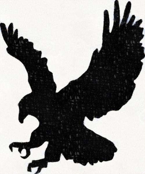erelis, kreida, dažymas, siluetas, gyvūnas, drąsus, laukiniai, vakaruose, simbolis, ženklas, Juodasis erelis