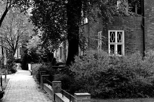 juoda balta,namai,juoda ir balta,architektūra,pastatas,senas,langas,plyta,juoda ir balta nuotrauka,kelias,užaugo,gamta