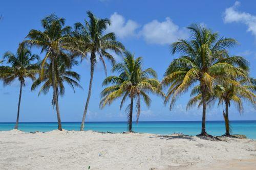 mėlynas dangus,baltas paplūdimys,baltas smėlis,jūra,Smėlėtas paplūdimys,oras,saulė,nuostabus paplūdimys