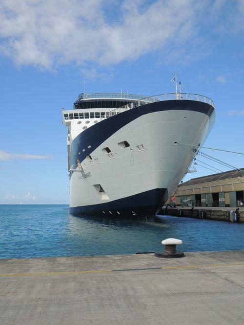 valtis,kruizas,laivas,garsenybė,viršuje,kelionė,šventė,jūra