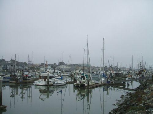 valtys,uostas,uostas,laivas,kranto,laivas,jūrinis,marina,prieplauka,prieplauka,jūrų,Krantas,industrija,jūrų,kranto,kroviniai,laivų statykla,kroviniai,jūrų uostas,prieplauka,prijungtas,pakrovimas,komercinis,prekyba,jachta,stiebas,karinis jūrų laivynas,tvirtinamas,lynai,burlaivis,karinis jūrų laivynas,takelažas,lankas,įlanka,korpusas,Rodyti kelią,fregatas,denio,vandens kelias