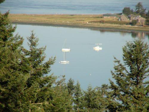 valtys, atspindys, įlanka, vanduo, sala, Vašingtonas, valtys ant stiklo