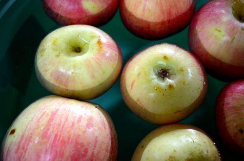 maistas, vaisiai, obuoliai, obuolys, Halloween, bobbing, dunking, bobbing & nbsp, už & nbsp, obuolius, žaidimai, vakarėliai & nbsp, žaidimų, bobbing obuoliai