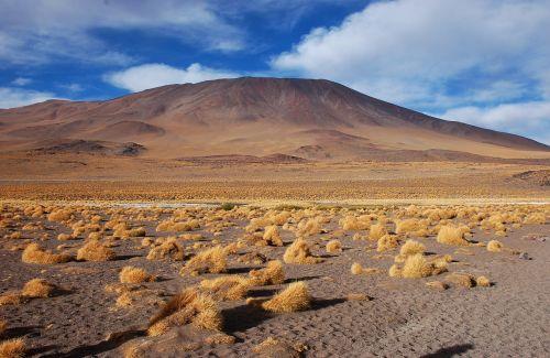 Bolivija,laguna,dykuma