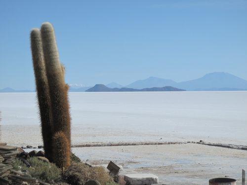 Bolivija,sala,druska