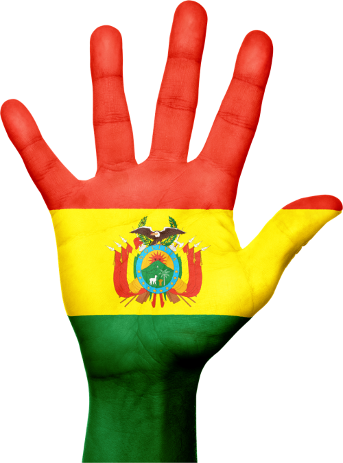 Bolivija,vėliava,ranka,nacionalinis,pirštai,patriotinis,patriotizmas,Bolivija,Pietų Amerika,gestas