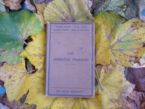 knyga,apimtis,Prancūzų kalba,gramatika