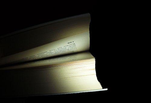 knyga,knygų puslapiai,skaityti,knygos,literatūra,puslapiai,popierius,naršyti