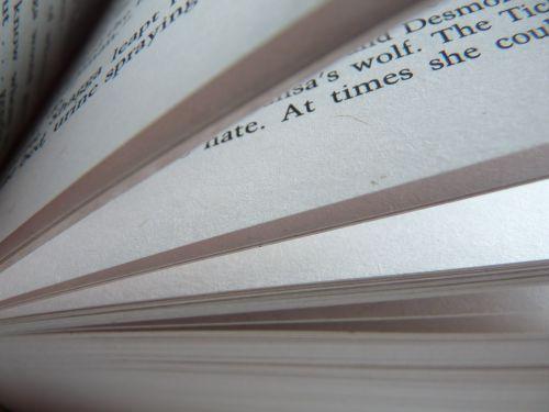 knyga, puslapiai, skaityti, skaitymas, romanas, puslapis, atviras, knygų puslapiai