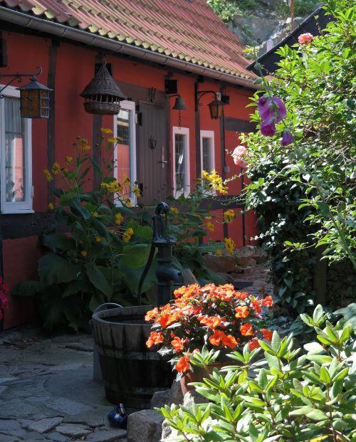 bornholm, denmark, senas, namas, turėti, gėlės, medinis rėmas, raudona