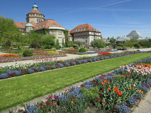 botanikos sodas, Botanikos sodas Miunchenas, pavasaris, parkas, Sodas, gėlė, žiedas, žydi, augalų, žydi, tulpės, gėlės, augmenija