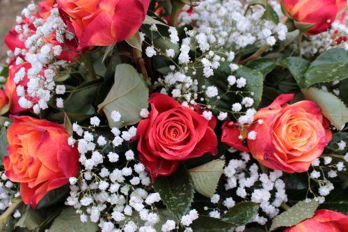 puokštė,raudonos rožės,gypsophila,gėlės,meilė,Valentino diena,vestuvių dieną,Motinos diena,kvepalai,šventė,romantika,romantiškas,liūtys