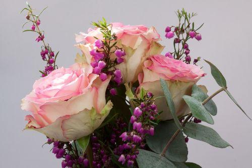 puokštė,rožė,erika,makro,gėlė,kompozitai,ruduo,gamta,augalas,balta,pastellfarben,rožinis,užpildyti,sodrus,dekoratyvinis