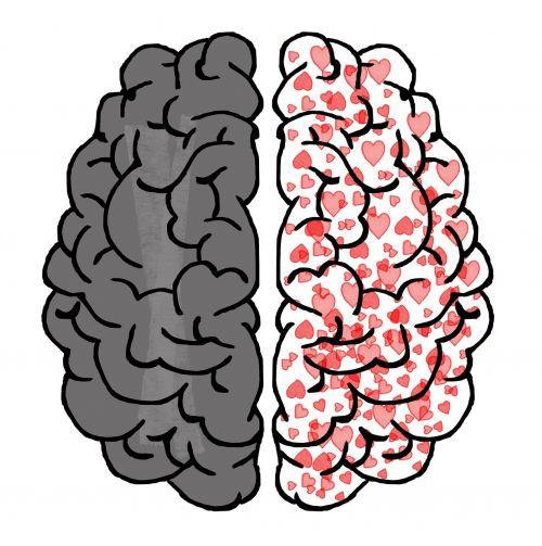smegenys,protas,psichologija,idėja,širdis,meilė,piešimas,padalinta asmenybė,mintis,chaosas,abejonių,plačių pažiūrų,pilkoji medžiaga,nesaugumas,nerimas,idėjos,palyginimas,fantazija,uždarytas protas,galva,mintis,koncentracija