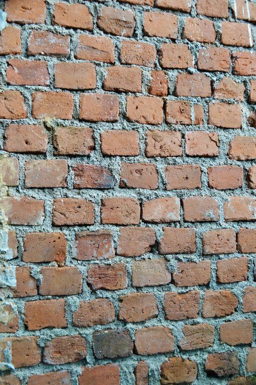 plytos,tekstūra,siena,tvora,apsauga,ne tinkuotos sienos,grubus,cementas,Šri Lanka,Mawanella,ceilonas