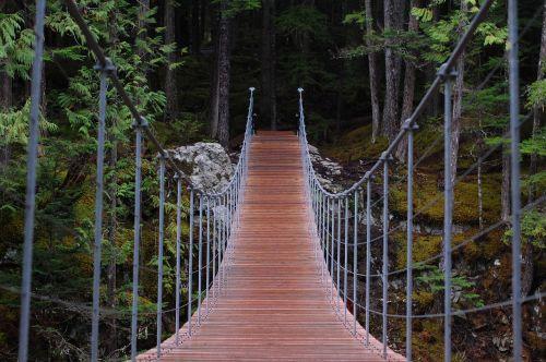 tiltas,žygis,Saunus
