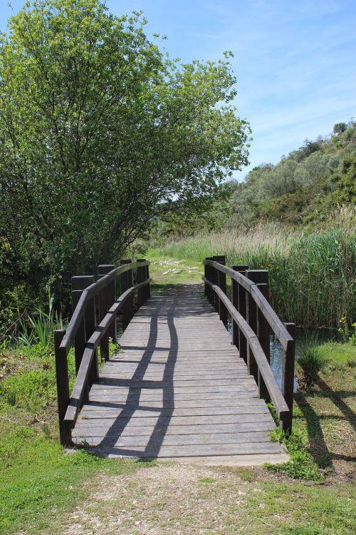 tiltas,upė,kraštovaizdis,vanduo,pelkės,pelkės,natūralus,peizažas,scena