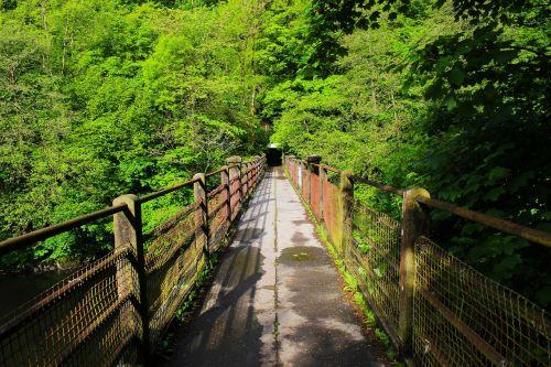 tiltas,mediena,gamta,kraštovaizdis,medinis,kelionė,lauke,struktūra,medis,senas,vaikščioti,natūralus,scena,kelias,architektūra,parkas,pėsčiųjų takas,žalias,kelias,takas,niekas,maršrutas,kelias,aplinka,Šalis,takas