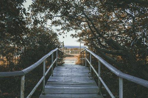 tiltas, Tampico, mediena, Meksika, ruduo, saulėlydžio, kelias, takas, salė, medžiai, siaubas, baimė, Helovinas, turėklai, vandens, Turizmas, šventė