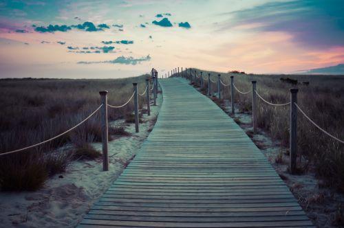 tiltas,takas,kelias,gamta,vaikščioti,kelias,medinis,mediena,takas,pėsčiųjų takas,perėjimas