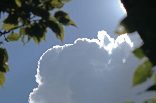 debesis, balta, didelis, cumulus, apvadu, šviesa, lapija, ryškiai puošnus debesys