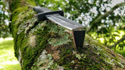 skaldomas peilis,peilis,ašmenys,juoda,batų peilis,samanos,filialas,žievė,stab