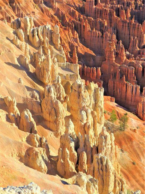 Bryce kanjonas,Utah,žygiai,raudonasis smiltainis