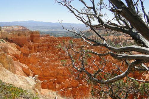 Bryce kanjonas,kraštovaizdis,nacionalinis,parkas,gamta,vaizdingas,kanjonas,Rokas,vaizdas,lauke,smiltainis,Utah,usa,dykuma,Bryce