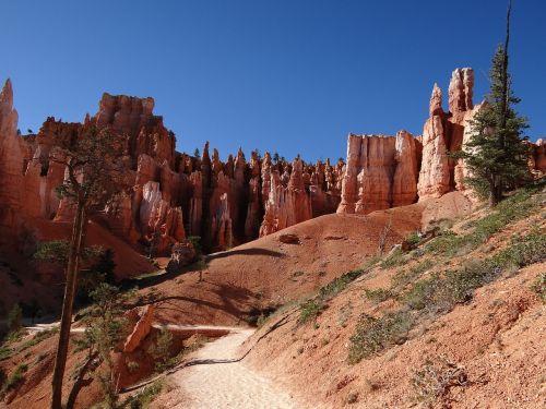 Bryce kanjonas,usa,Utah,Bryce Canyon nacionalinis parkas,piramidės uola,bokštas,mation,Gorge,smėlio akmuo,medis,kanjonas,raudona,akmuo,akmeniniai bokštai