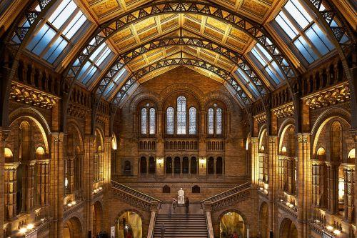 pastatas,interjeras,architektūra,viduje,naturalus istorijos muziejus,Londonas,stulpeliai,stulpai,statula,orientyras,žinomas,šiuolaikinis,lubos,vidaus apšvietimas,vidaus siena