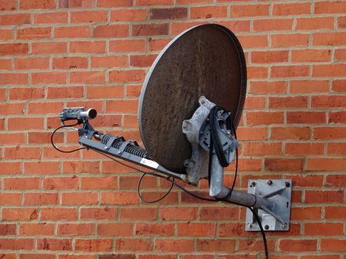 palydovas, palydovai, patiekalas, patiekalai, transliavimas, skaitmeninis, tv, televizija, televizoriai, imtuvas, imtuvai, transliuoti, transliacijos, antena, antenos, antenos, antenos, antena, kurti palydovinį anteną