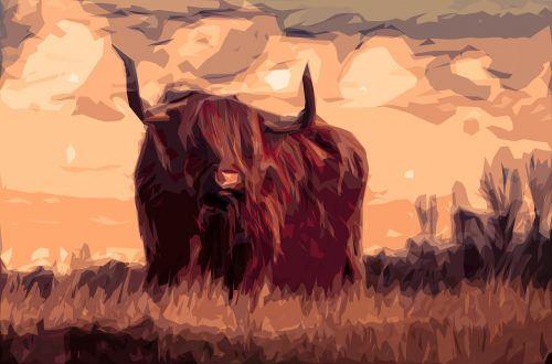 bulius,galvijai,gyvūnas,Afrikos ragas,žinduolis,kanopas,plaukuotas,kraštovaizdis,vakaras,saulėlydis,pieva,ūkis