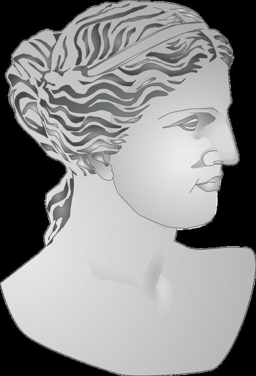biustas,romėnų,statula,moteris,skulptūra,marmuro biustas,senovės,nemokama vektorinė grafika