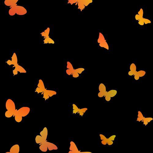 nustatyti, geltona, oranžinė, gradientas, drugeliai, izoliuotas, fonas, juoda, fonas, siluetai, drugeliai nustatyti