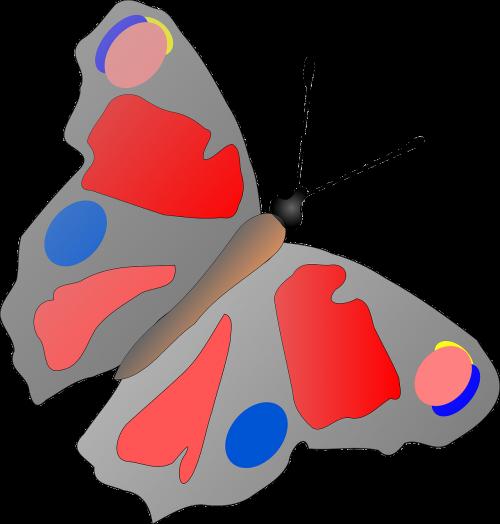 drugelis,vabzdys,spalvoti,dėmės,sparnai,spalvinga,nemokama vektorinė grafika