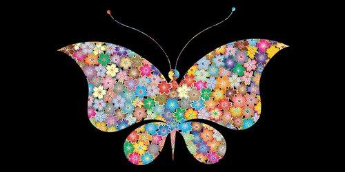 drugelis, gėlių drugelis, mažas poli, vabzdžiai, plaukioja drugelis png, drugelis png vektorių, nekilnojamojo drugelis PNG, drugelis PNG skaidrus, drugelis png juoda ir balta, drugelis png hd vaizdus, butterfly Png iškarpų, Cartoon drugelis PNG, Butterfly informacijos, drugelis faktai, drugelis mažesnės klasifikacijos, drugelis gyvavimo ciklas, monarcho drugeliu, drugių rūšys, Butterfly mokslinis pavadinimas, poli, trikampio forma, 3d formos, drugelis akcijų, drugelis Wiki, drugelis vaizdas, drugelis atvaizdo, drugelis iliustracijos, drugelis vektoriaus, drugelis png, drugelis logotipas, drugelis grafika, drugelis dizainas, drugelis marškinėliai, drugelis dovana, fonas tekstūros, fonas abstraktus, background vaizdai, pixabay, fono modelis, žemos poli, trikampis, fonas, Anotacija, dizainas, tekstūros, pristatymas, brošiūra, taškų, Laisvalaikis Kamienas nuotraukos, Nemokama iliustracijos