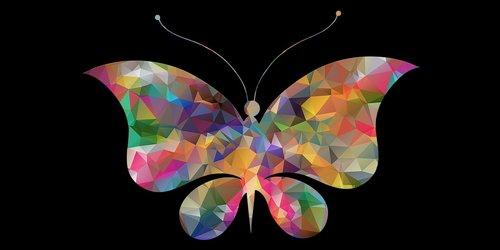 drugelis, mažas poli, vabzdžiai, plaukioja drugelis png, drugelis png vektorių, nekilnojamojo drugelis PNG, drugelis PNG skaidrus, drugelis png juoda ir balta, drugelis png hd vaizdus, butterfly Png iškarpų, Cartoon drugelis PNG, Butterfly informacijos, drugelis faktai, drugelis mažesnės klasifikacijos, drugelis gyvavimo ciklas, monarcho drugeliu, drugių rūšys, Butterfly mokslinis pavadinimas, Nemokama iliustracijos