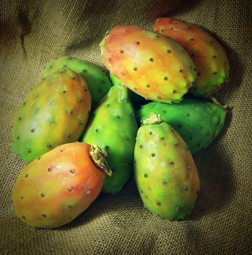 dygliuotas kriaušes,kaktusiniai vaisiai,vaisiai