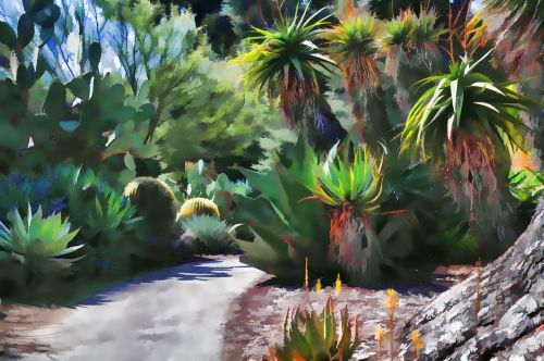 dykuma, dykumos, kaktusas, kaktusai, augalai, sodas, sodininkystė, Laisvas, viešasis & nbsp, domenas, dažytos, meno, menas, tapybos, kaktusas sodas