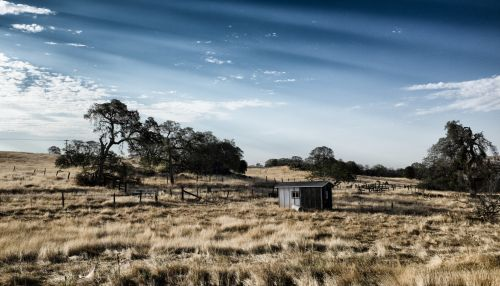Kalifornija, medis, namas, mediena, žolė, sausas, kažkur, gražus, romantiškas, karštas & nbsp, oras, saulėtas, Kalifornija 2