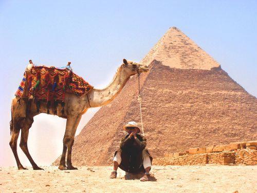 Kupranugaris, Dykuma, Piramidė, Artimieji Rytai, Smėlis, Gyvūnai, Žmonės