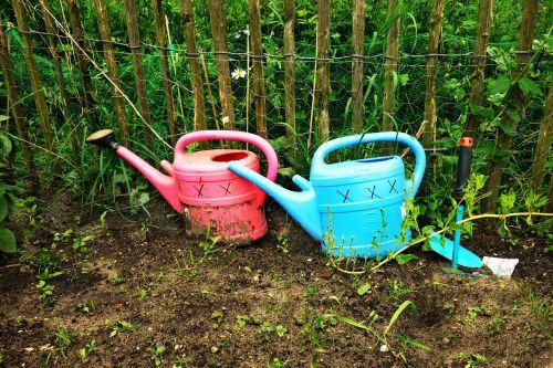 gali,laistytuvas,įranga,sodininkystė,vanduo,sodininkystė,rožinis,mėlynas,plastmasinis